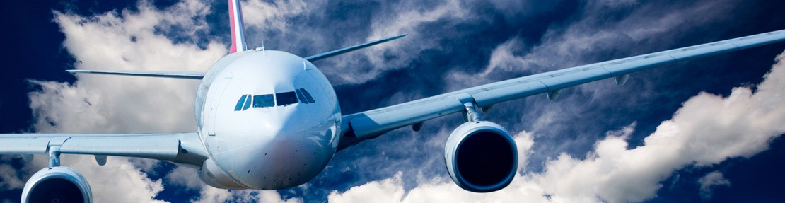 Aircraft Fall Protection